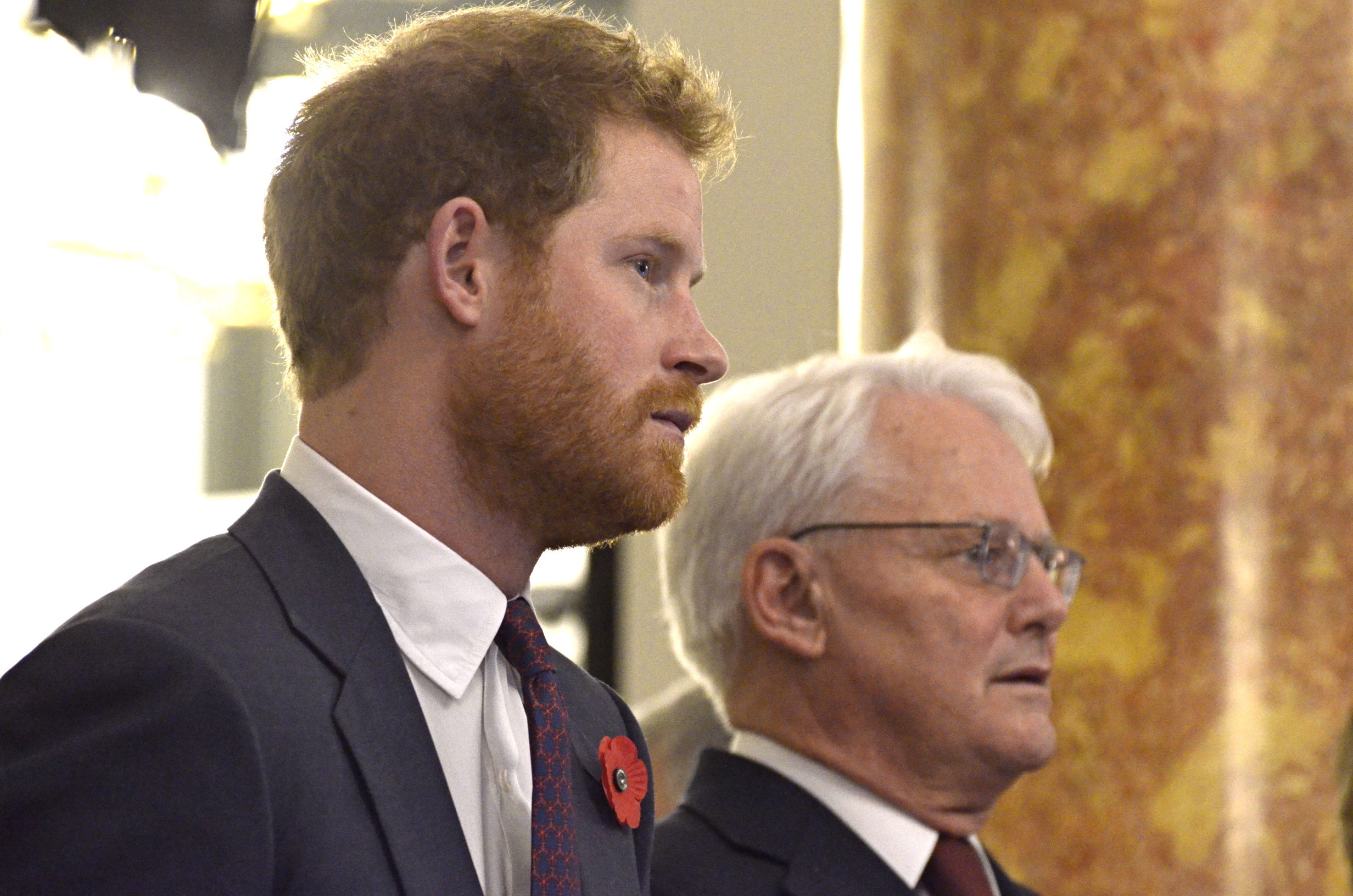Prince Harry and High Commissioner Gordon Cambell watch CONTACT!unload